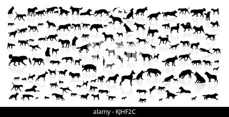 Dogs of different breeds. Silhouettes of dogs on a white background. Collection of dogs of various breeds. - Stock Photo