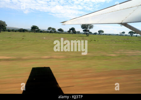 Mara serena air trip. Masai Mara game reserve. Kenya. - Stock Photo