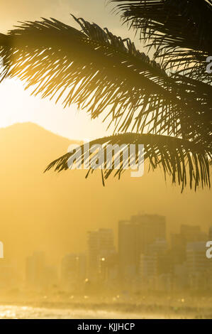 Golden sunset lights up the silhouette of palm fronds against the outline of  Ipanema buildings and mountains in - Stock Photo