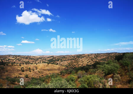 typical dry landscape of Alentejo region,south of Portugal - Stock Photo