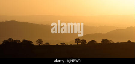 Silhouetted trees at sunrise seen from the Llangattock Escarpment in the Brecon Beacons - Stock Photo