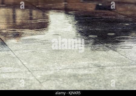 Wet walkway in park after rain - Stock Photo