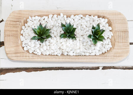 Succulents, white pepples and vintage table - Stock Photo
