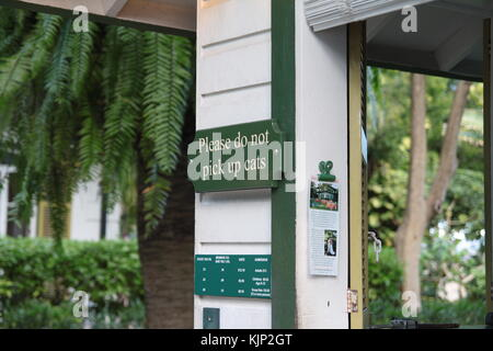 A signboard asks not to pick up cats at Ernest Hemingway house in Key West, Florida. - Stock Photo