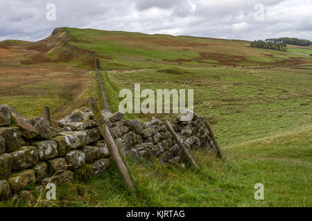 Dry stone wall on the path of Hadrian's Wall. Built using the origional stones from the wall. Not far from Walltown - Stock Photo