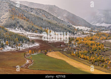 Scenic autumn aerial view on mountains covered with forest, valley between mountains, fields, road, golden trees - Stock Photo