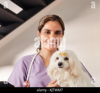 Confident young hispanic woman at work as veterinary, happy vet playing with dog during house call. Animal doctor - Stock Photo
