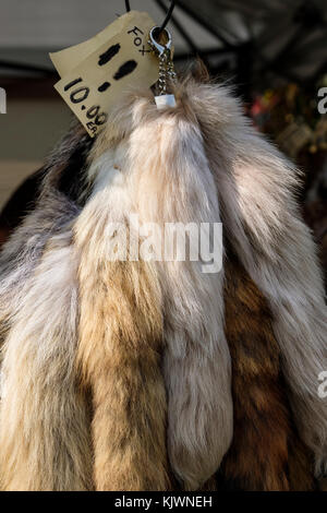 Several fox tales (fur, pelt) for sale hanging on display. - Stock Photo
