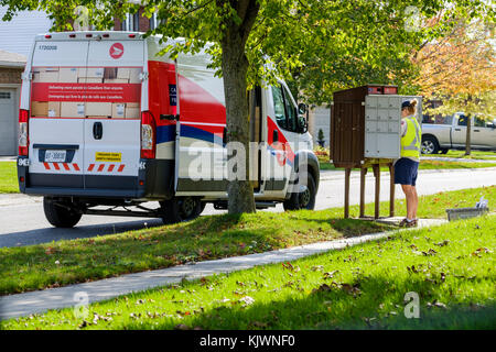 Canada Post mail worker, letter carrier delivering lettermail at a mailbox in a residential area, London, Ontario, - Stock Photo