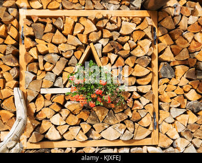 Natural wooden background, closeup of chopped firewood. Firewood stacked and prepared for winter Pile of wood logs - Stock Photo