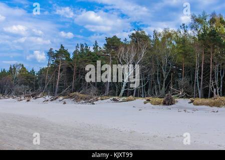 Strict protection area of Slowinski National Park on the Baltic coast in Pomeranian Voivodeship, Poland - Stock Photo