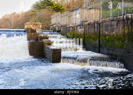 Upper fish ladder at the side of Lopwell Dam on the River Tavy, Devon, UK - Stock Photo
