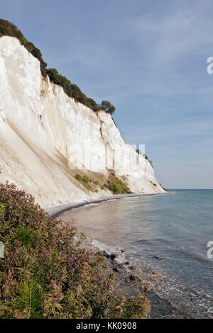 Møns Klint, the steep chalk cliffs up to 120m above sea on the eastern Baltic Sea coast of the island Møn southeast - Stock Photo