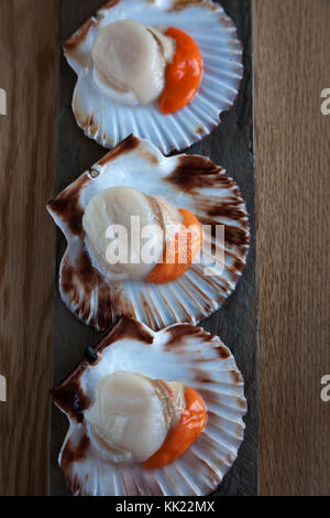 Three king scallops with corals in half shells on stone base. Portrait vertical format. - Stock Photo
