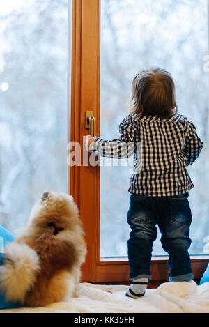 Little boy and pomeranian spitz look through the window at winte - Stock Photo