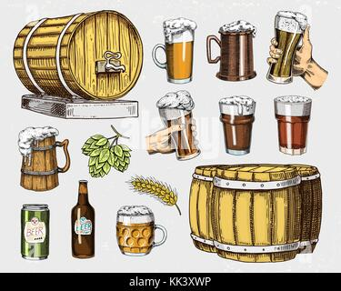 Beer glass, mug or bottle, wooden barrels. engraved in ink hand drawn in old sketch and vintage style for web, invitation - Stock Photo