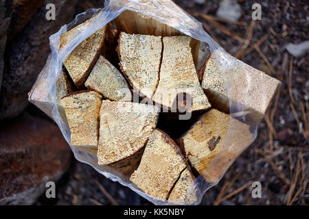 Supply of chopped dry fire wood in a plastic bag for a camping trip viewed from above resting on the ground - Stock Photo
