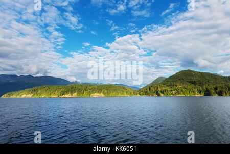 Rain forest in Vancouver island, British Columbia, Canada - Stock Photo