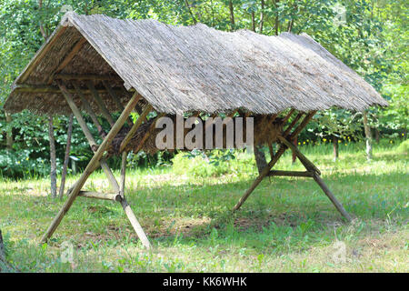 Pasture for wild animals in a forest - Stock Photo