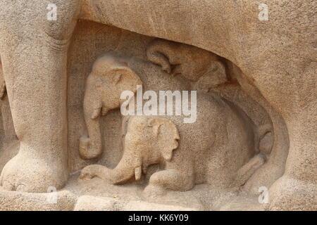 Arjunas Buße in Mahabalipuram, Mamallapuram, Tamil Nadu, Indien, Stone Carvings with Elefants - Stock Photo
