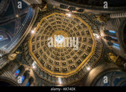 Ceiling of central dome on cathedral in Siena, Italy - Stock Photo