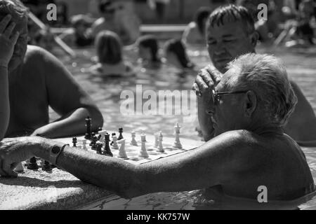Old Men playing Chess in the outdoor Thermal Pool at the Szechenyi Thermal Baths, Budapest. Monochrome, Black and - Stock Photo