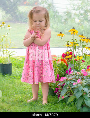 Child in a flower garden holding a painted lady butterfly on her finger - Stock Photo