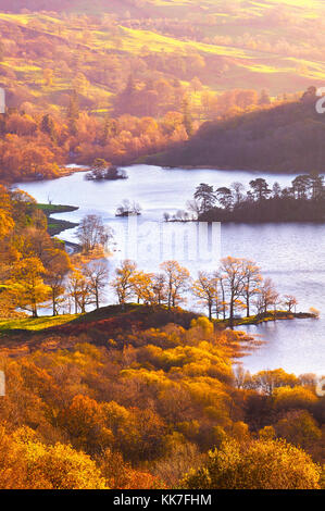Warm, raking light paints the beautiful autumn landscape at Rydal Water, in the Lake District National Park. - Stock Photo