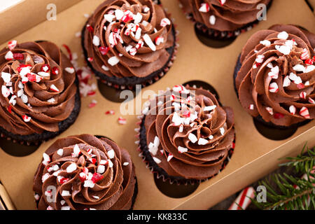 Chocolate peppermint cupcakes with candy cane - Stock Photo
