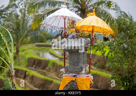 Little Hindu altar / sanggah in the Jatiluwih terraced paddy fields, rice terraces in the highlands of West Bali, - Stock Photo
