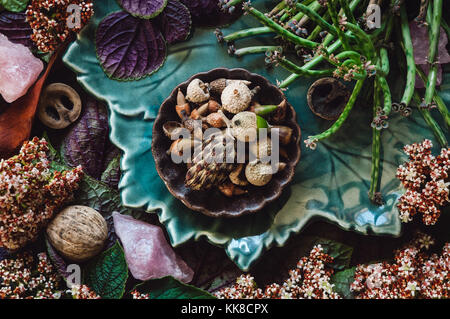 A Collection of Specimens, Flowers and Rose Quartz Crystals. - Stock Photo