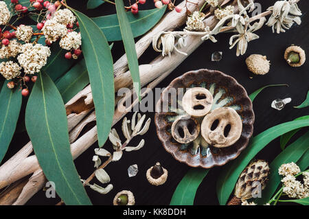 A Collection of Tree Bark, Eucalyptus, Seeds, Nuts and Crystals. - Stock Photo