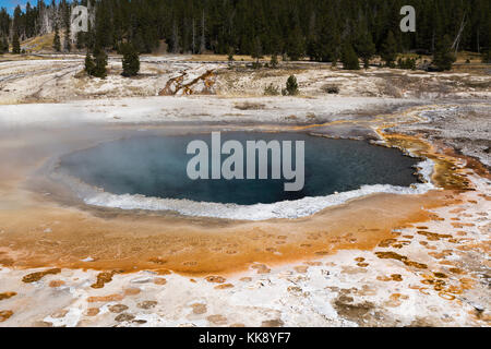 Crested Pool Thermal Feature in the Upper Geyser Basin, Yellowstone National Park - Stock Photo