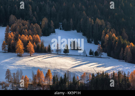 lonely house in forest in surround f St. Maddalena village, Dolomites, Italy - Stock Photo