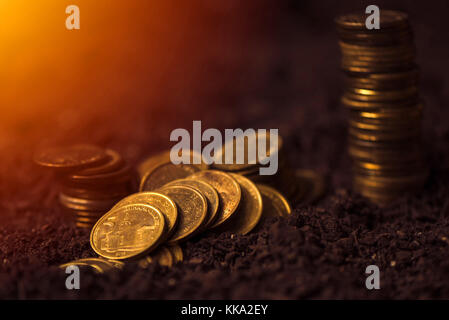 Bank loans for agricultural production, Serbian dinar currency coins in fertile soil - Stock Photo