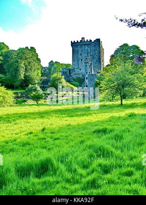 Blarney Castle near Cork, Ireland - Stock Photo