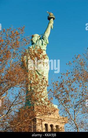 Statue of liberty rear view against blue sky behind trees in aut - Stock Photo