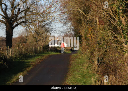 Scarva, County Down, Northern, Ireland. 29th Nov, 2017. UK weather - despite the odd shower, sunny spells and clearing - Stock Photo