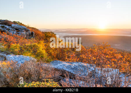Morning sunrise with sky and golden yellow orange autumn foliage in Dolly Sods, Bear Rocks, West Virginia with overlook - Stock Photo