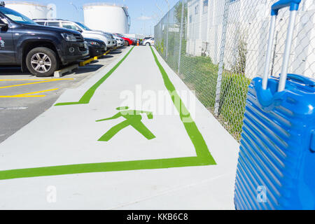 AUCKLAND, NEW ZEALAND - NOVEMBER 27, 2017; Green lines and green walking man sign on footpath showing way between - Stock Photo