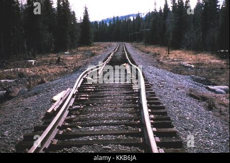 Train rails that have been buckled due to the effects of the magnitude 9.2 1964 Alaska Earthquake. Image courtesy - Stock Photo