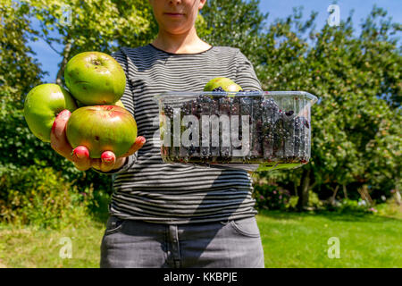 Young woman holding out freshly picked apple and blackberries. England, UK 2017 - Stock Photo