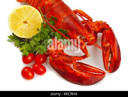 red lobster - Stock Photo