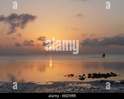 A distant lone figure gathers seaweed at dawn when the tide is out in Jambiani on the Island of Zanzibar - Stock Photo
