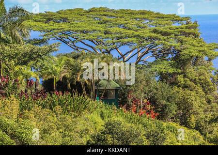 Garden of eden landscape view on Maui on Hawaii Stock Photo ...