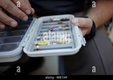 Fly fisherman selecting a specific fly from a plastic box containing hand tied feather flies in a close up view - Stock Photo