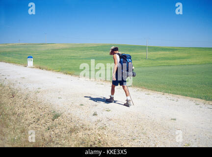 Pilgrim walking along Camino de Santiago. Palencia province, Castilla Leon, Spain. - Stock Photo