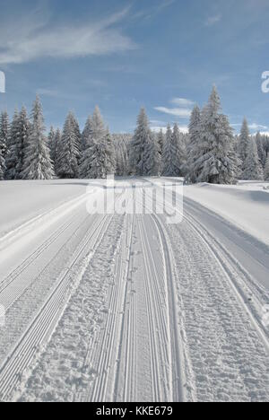Ski slope and snowy road through spruce forest with snowmobile tracks in a bright winter day - Stock Photo