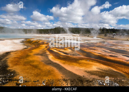 Handkerchief Pool and Geyser Thermal Feature in Black Sand Geyser Basin, Yellowstone National Park - Stock Photo