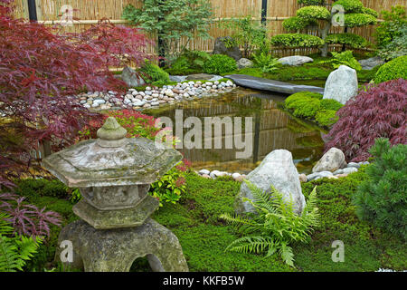 Garden in the style of a Japanese Tea Garden with traditional planting - Stock Photo